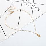 Halsband van het Roestvrij staal van het Fruit van de Juwelen van de Manier van de Gift van vrouwen de Gouden