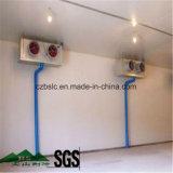 Kühlraum, Kaltlagerung, Tiefkühltruhe, PU-Zwischenlage-Panel, Abkühlung-Teile