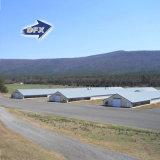 Berufshersteller-vorfabriziertes Huhn-Geflügelfarm-Haus