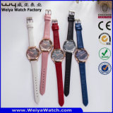 사업 합금 최신 판매 시계 ODM 가죽 시계 (WY-134C)