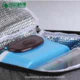 Saco de acampamento personalizado popular do refrigerador do piquenique do curso do saco de gelo para ao ar livre
