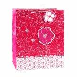 A cor-de-rosa floresce os sacos de papel do presente das sapatas da roupa do coração das listras azuis