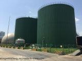 Biogas 플랜트