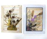 3D Flores Secas armazón de madera