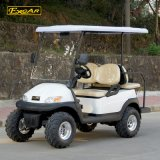Alta qualità A1s2+2 fuori dal carrello di golf elettrico di Utllity della strada
