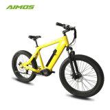 48 В 1000W 10 скорость двигателя среднего уровня электрический велосипед с Dowhill передней вилки