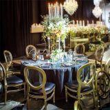 La resina clásica silla Napoleón para todos los eventos