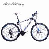 Bici adulta barata del camino de la alta calidad