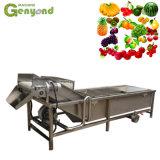 Wassende en Sorterende Machine voor Groente en De Lijn van de Fruitverwerking