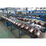 セリウム、GSは3トンの持ち上げ装置Polipasto Electricoを証明した