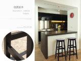 De stevige Houten Staaf zit het Dineren de Moderne Stoelen van Stoelen (voor m-X2028)