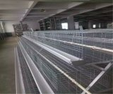 Cage de poulet de Hybird d'exploitation d'élevage avec le système automatique de matériel (un type bâti)