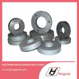 Diverse Aangepaste Sterke Magneet van het Ferriet van de Ring N35-N52 Permanente