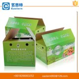 Caixa de empacotamento da fruta da impressão de cor