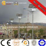 鋳造アルミの街灯の据え付け品の李電池の太陽街灯30W