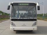 Motoronderdelen/Chang de Motoronderdelen van een Bus