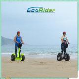 遅の中国のオフロード2つの車輪のバランスの電気スクーター