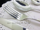 Jeu réglé d'acier inoxydable de vaisselle réglée réglée de couverts de vaisselle plate