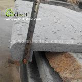 Hainan-natürliches abgezogenes grauer Basalt-Bullnose Rand-Pool-Fertig werden