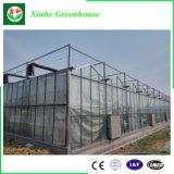 Serre chaude en verre intelligente de Multispan pour l'agriculture