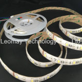 LED 장비 지구 빛 5050SMD DC24V RGBW 색깔 LED 명부 빛