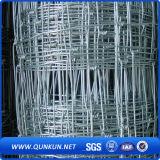 Rete fissa del pascolo/rete fissa del campo/rete fissa del bestiame/recinzione
