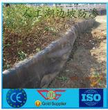 HDPE Geomembrane con la mejor fuerza para el camino de la charca de pescados del terraplén