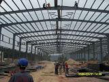 Profesional en Stanard Acero Instalación Estructura Edificio