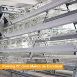 나이지리아에 있는 판매를 위한 자동적인 층 닭 농장 가금 장비