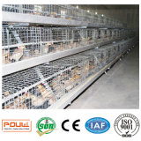 養鶏場の新しい若めんどりはおりに入れる装置システム(タイプフレーム)を