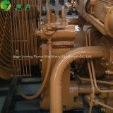 20kwからの1200kwへのLvnengのメタンのBiogas力LPGの発電機