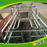 Pflanzenschule-Rahmen-Gerät, das galvanisiertes Schwein-Säen-Bett bewirtschaftet