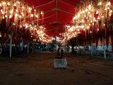 Biens mobiliers Exhibtion tente Tente tente avec la pagode de plein air