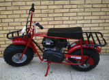 """Bici di vendita calda della sporcizia del gas dei 19 """" freni a tamburo 196cc mini con EPA e Ce da vendere"""