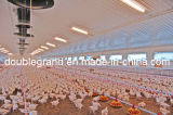 La volaille en acier préfabriquée renferment, des maisons de poulet avec le matériel (PCH-7)