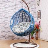ピンクの工場屋外の振動、藤の家具、屋内卵のハングの椅子(D011)
