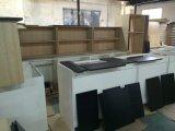 Мебель Skc17008 кухни 2017 неофициальных советников президента твердой древесины традиционная