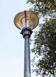 Lampe de jardin de 70W 150W, poteau de lumière de jardin
