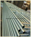 Recinzione provvisoria galvanizzata del ferro della strumentazione dell'azienda agricola delle transenne del bestiame