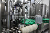 Gas-Mineral/funkelndes Wasser-Dosenabfüllanlage/Pflanze
