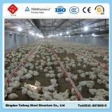 プレハブの鉄骨フレームの構造の養鶏場の家禽は家禽装置によって収容する