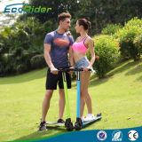 2016 neues Mini Portable Brushless Motor 350W Foldable Electric Scooter