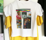 Byc Digital A3 mais a impressora da camisa do DTG T