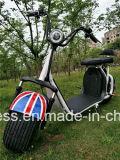 fetter Gummireifen Usun Harley Citycoco des Rad-1500W E-Roller mit Cer