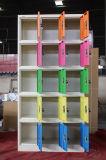 De Vervaardiging van het Kantoormeubilair 15 Kasten van de Schoenen van het Metaal van Deuren