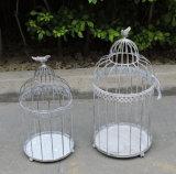 De Kooi van de Vogel van het ijzer van de Decoratie van de Tuin