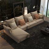 Salon moderne de modèle réglé de sofa