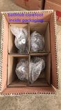 Commerce de gros et de l'exportation Clawfoot à bille en laiton pour bains classique