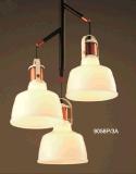 Innenbeleuchtung-industrielles hängendes Licht (Schwarzes 9058/3L)