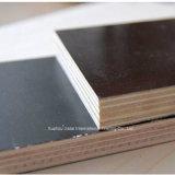 La película de material de construcción de madera contrachapada de encofrados encofrados de madera contrachapada de frente para la construcción
